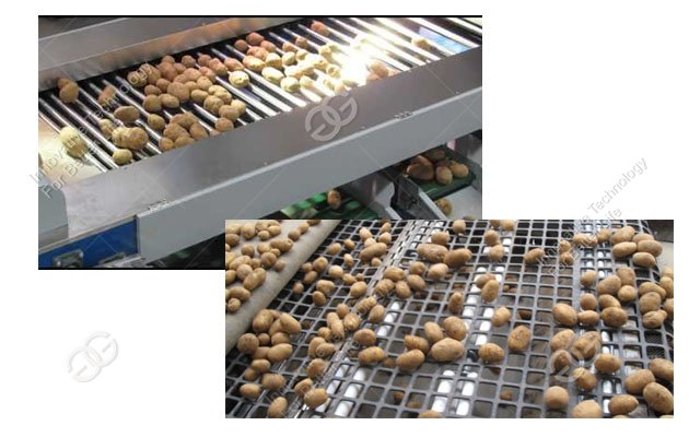 potato grading machine